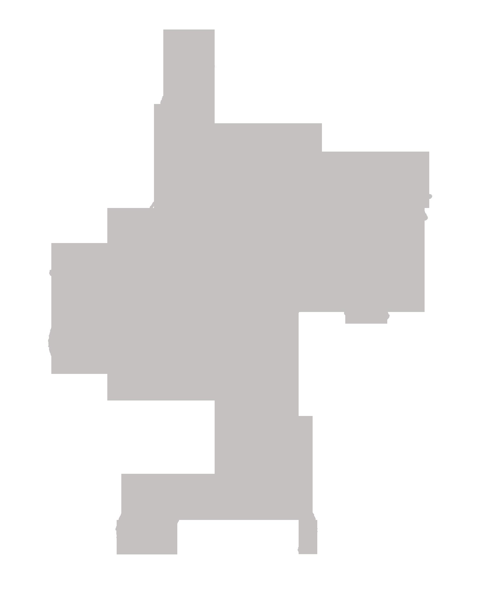 logo2_szurke